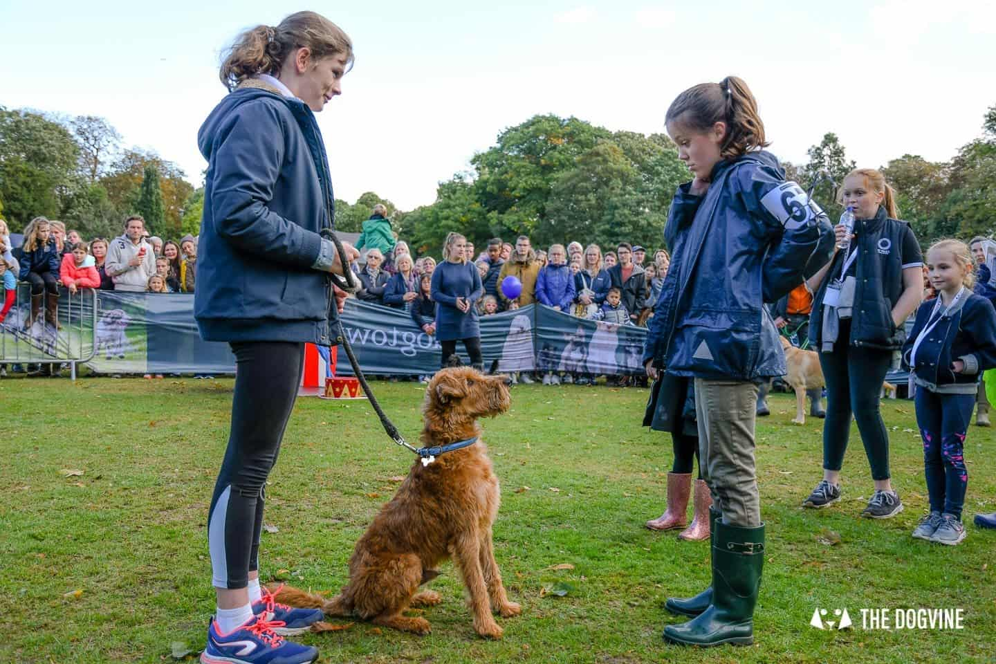 The Chiswick House Dog Show My Dog's Got Talent 4