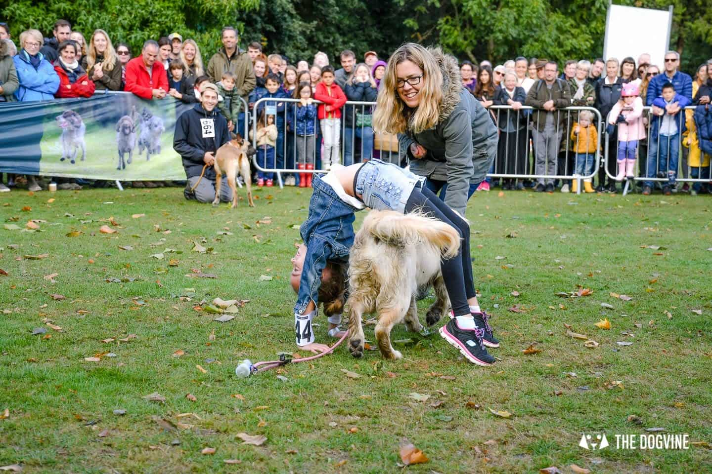 The Chiswick House Dog Show My Dog's Got Talent 7