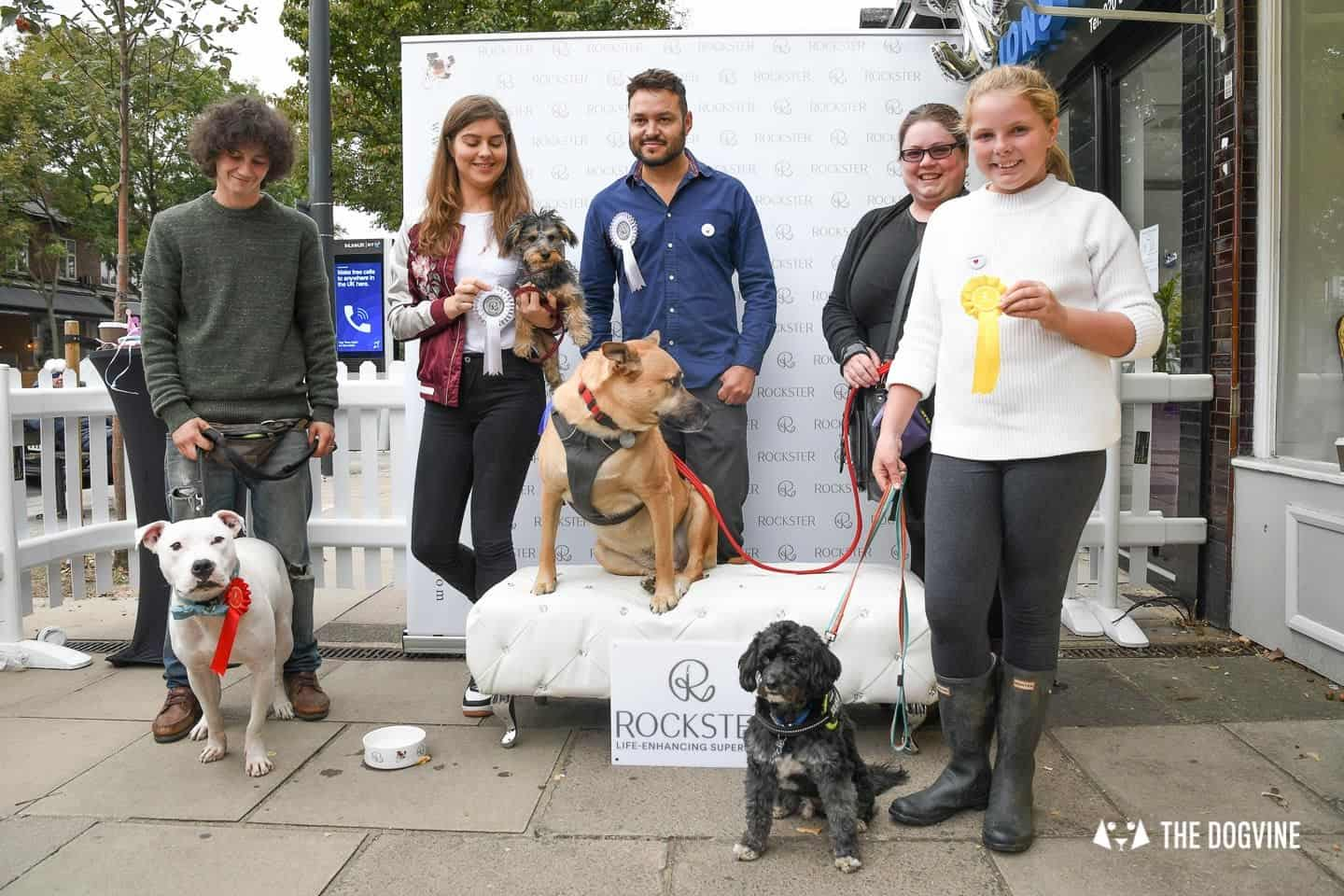 Crossbreeds & Rescue Dogs in the Spotlight at the Crossbreed Café 8