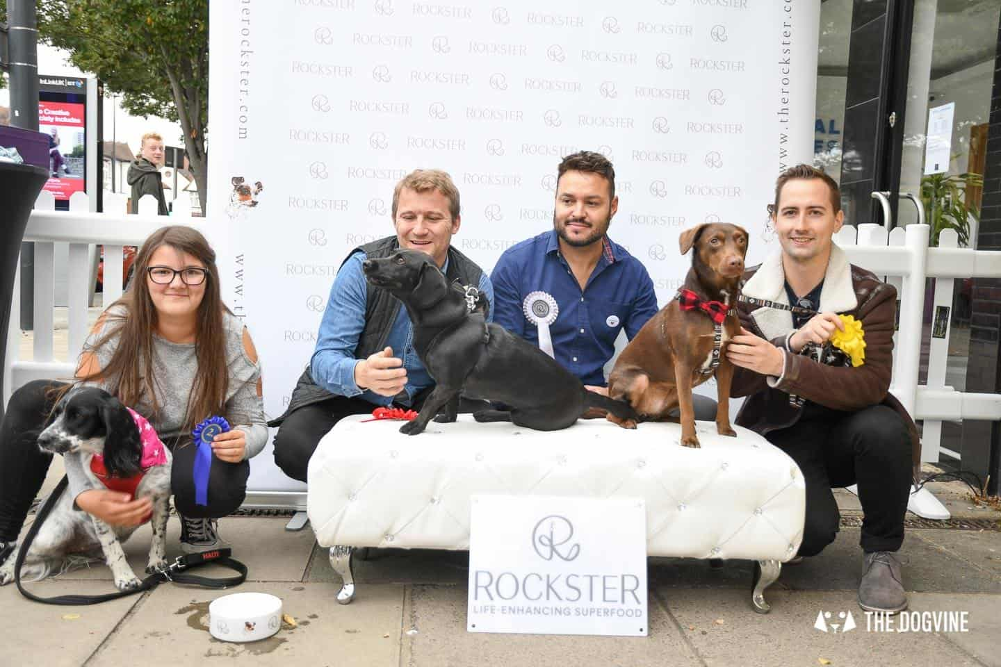 Crossbreeds & Rescue Dogs in the Spotlight at the Crossbreed Café 9