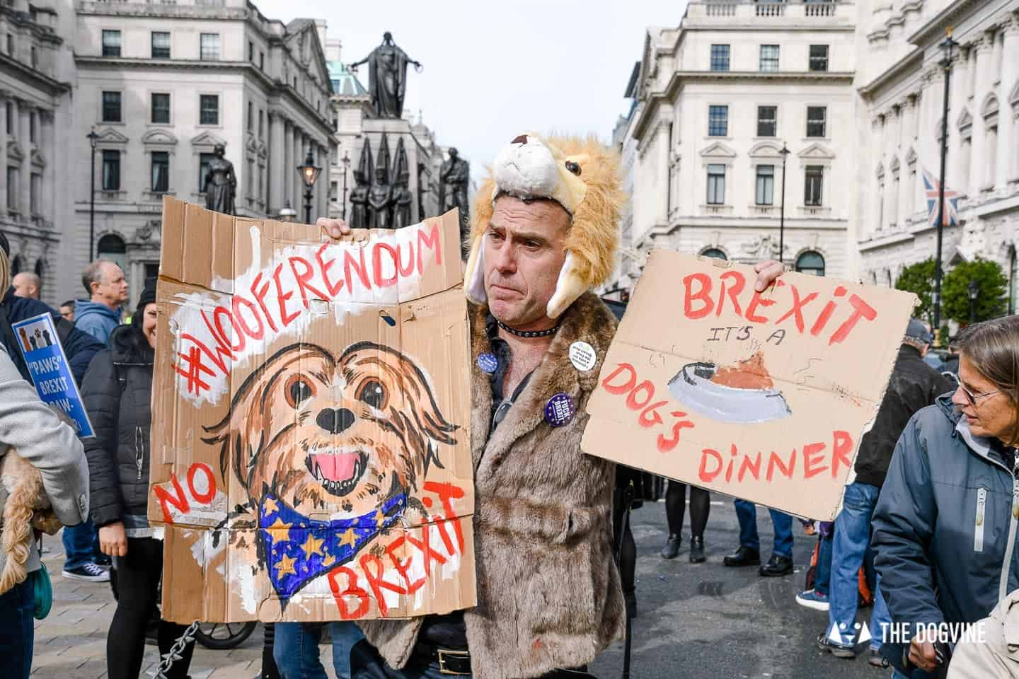 Dogs and Pups Protest at Westminster Brexit Wooferendum March In Pictures 42
