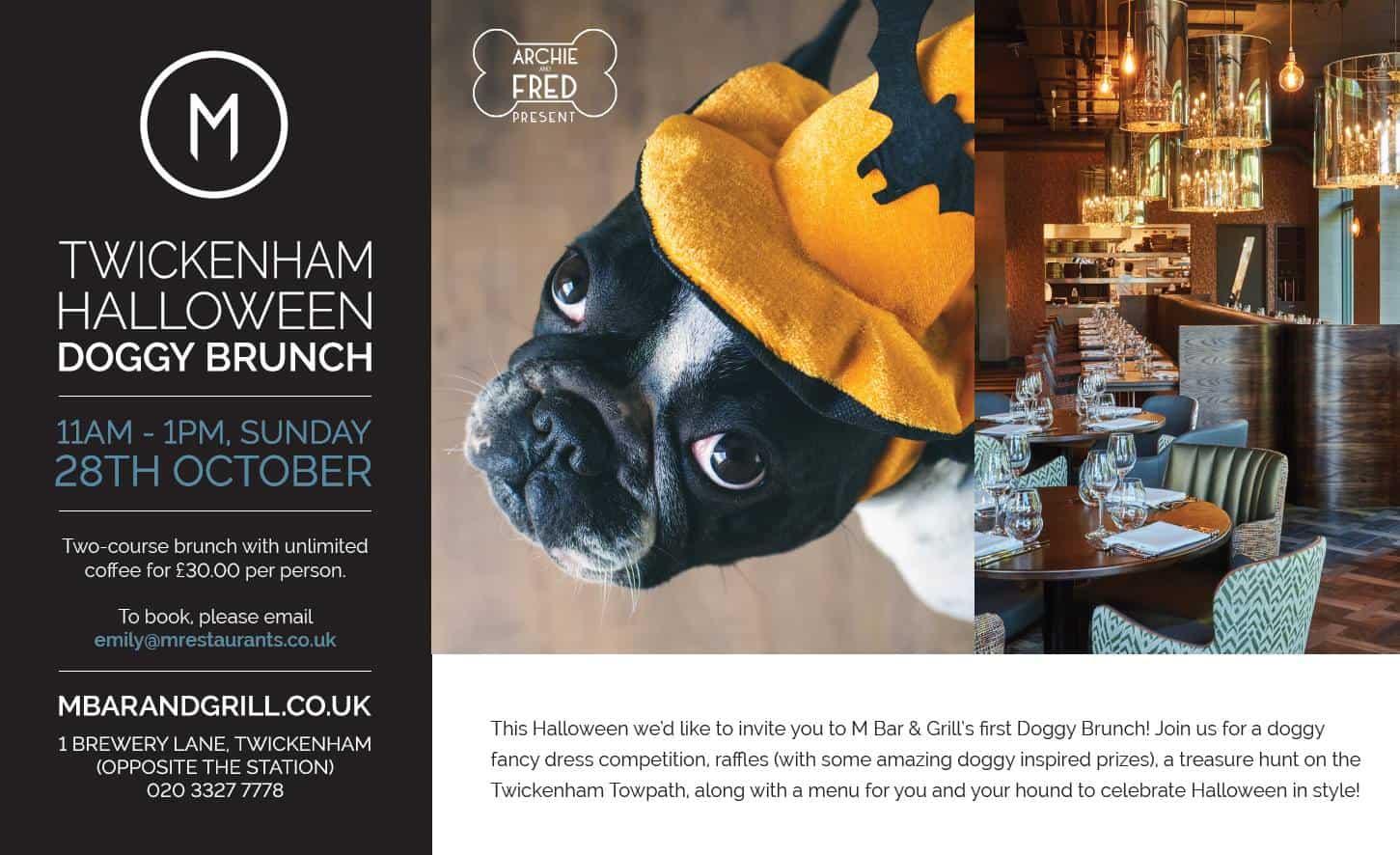 Halloween Doggy Brunch M Bar & Grill Twickenham
