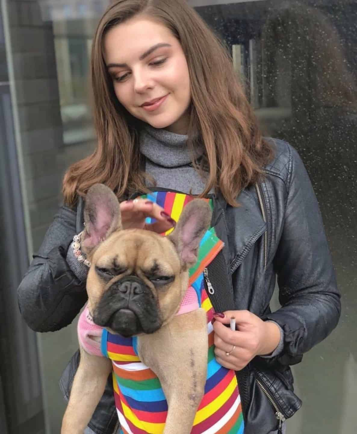 How Renting a Flat With a Dog in London Is Easy with Fizzy Living - Alexandra & Lillie the French Bulldog