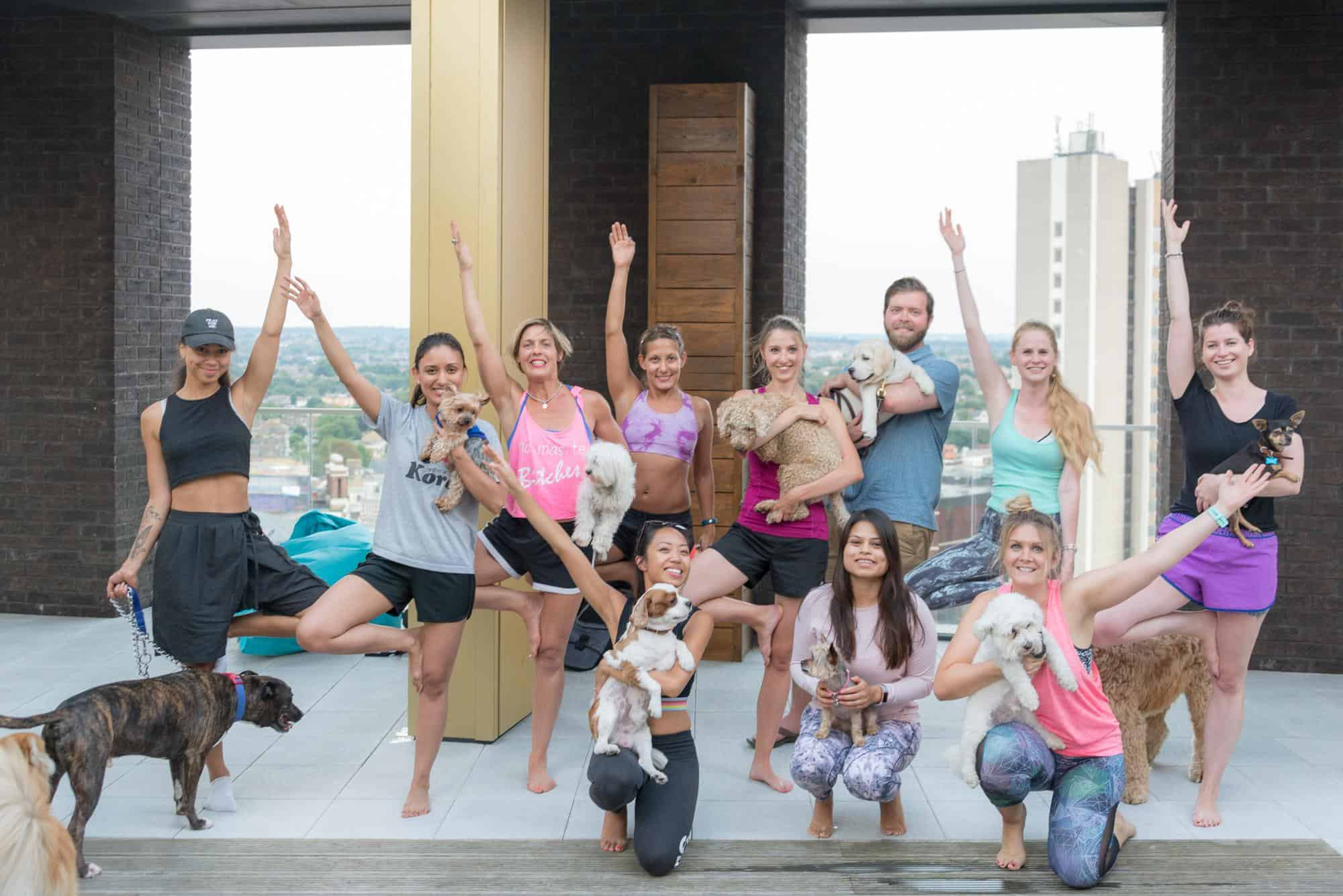 How Renting a Flat With a Dog in London Is Easy with Fizzy Living - Dog Yoga at Fizzy Living Lewisham
