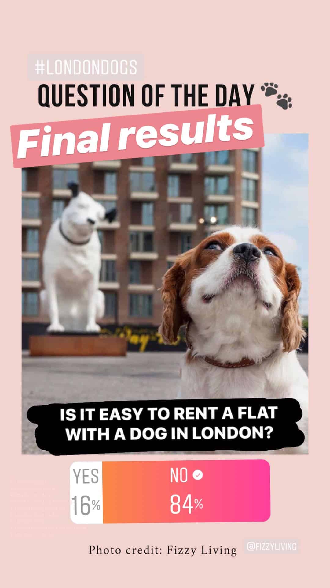 IS RENTING A FLAT WITH A DOG IN LONDON EASY POLL