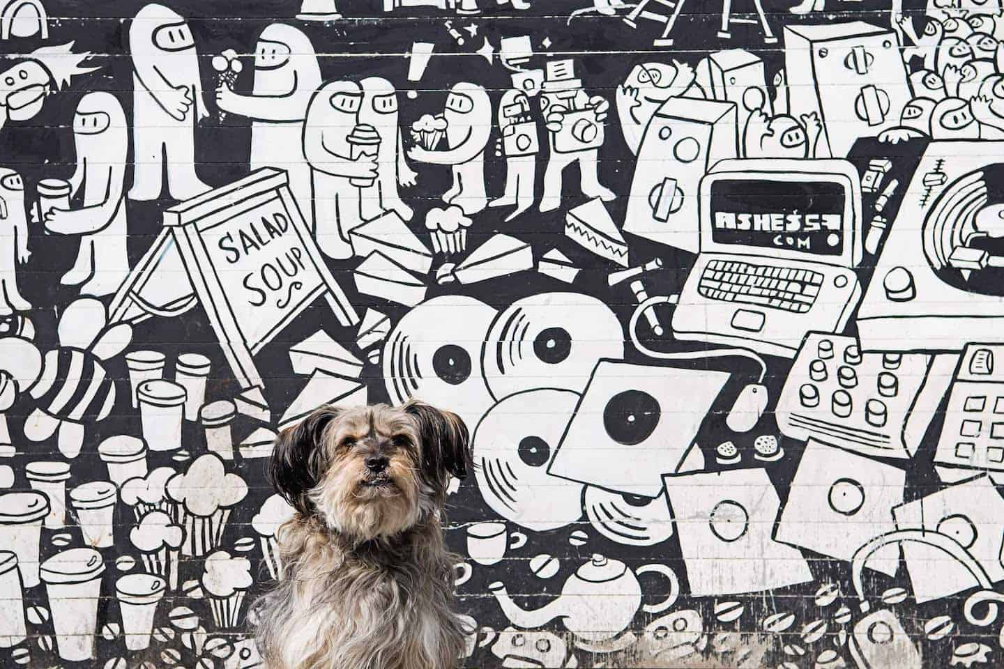 London Dog Events On This Week 26 - 31 October - Shoredtich Street Art and Dogs