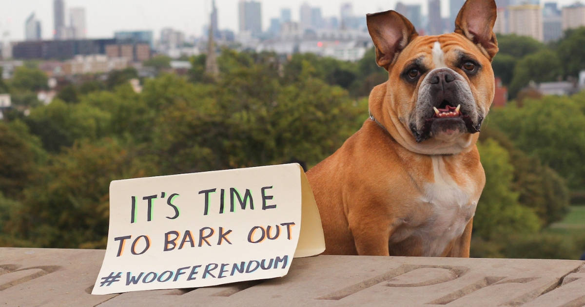 London Dogs To Bark Out Against Brexit on the Wooferendum March