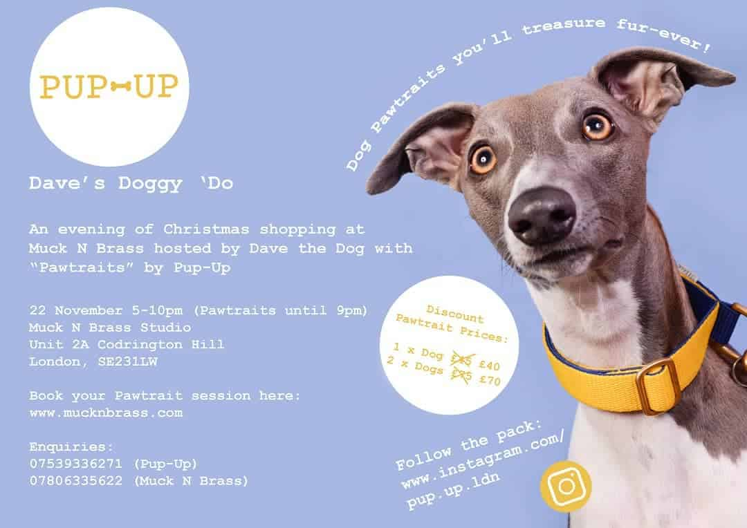 Muck N Brass Studio Pup-Up Pawtraits | Dave's Doggy Do