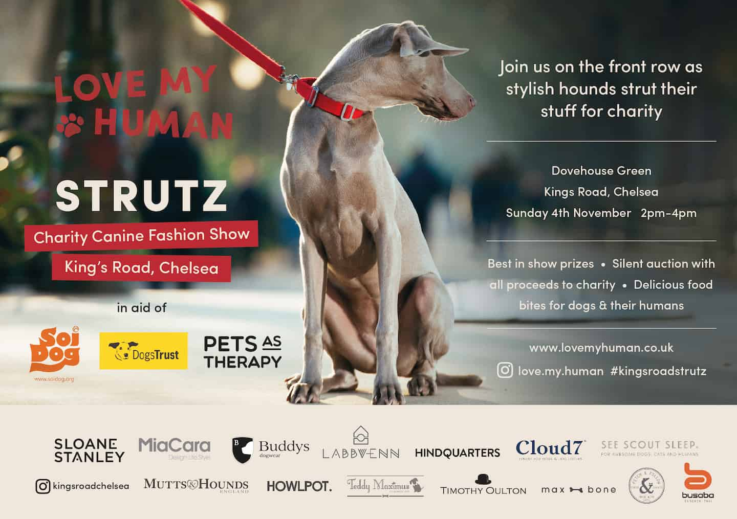 STRUTZ Canine Fashion Show