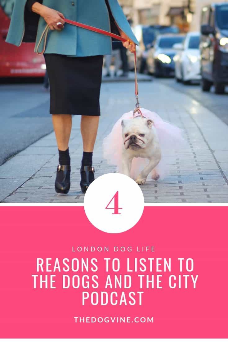 4 Reasons to listen to the new Dogs and The City Podcast - London Dog Life