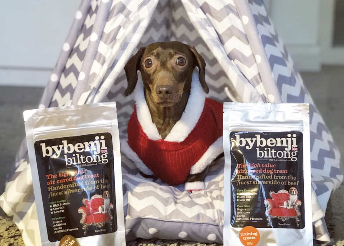 A Christmas Gift Guide For Dog Divas | By Benji With Pops