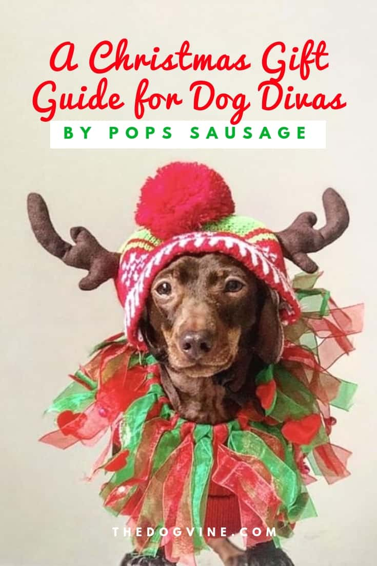 A Christmas Gift Guide for Dog Divas - Pops Sausage Cover Girl