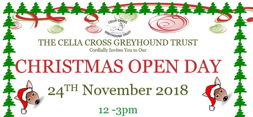 Celia Cross Greyhound Trust Christmas Open Day 2018