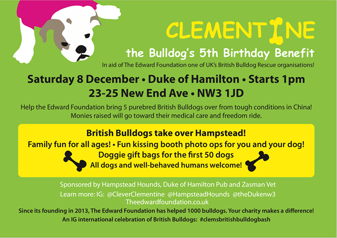 Clementine the Bulldog's Birthday Benefit Hampstead