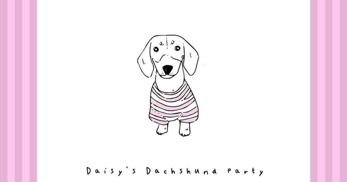 Daisy's Dachshund Christmas in a Winery (1)