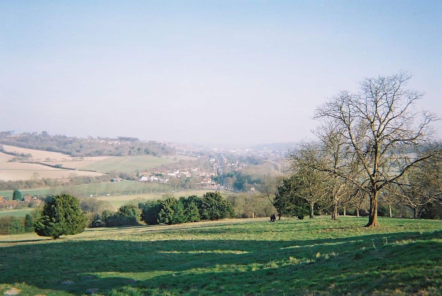 Dog-Friendly Days Out To Escape London For The Day - The Chilterns
