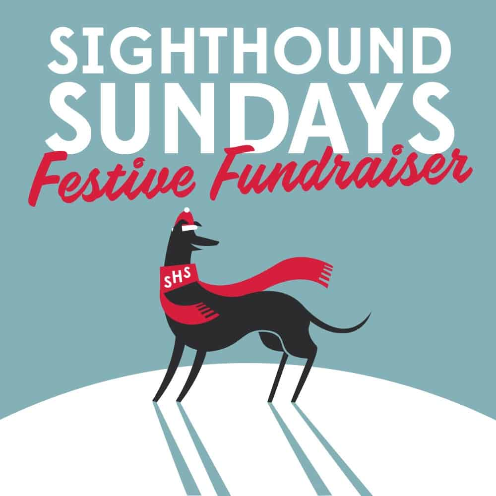 London Dog Events On This Week 22-25 November - Sighthound Sundays Festive Fundraiser