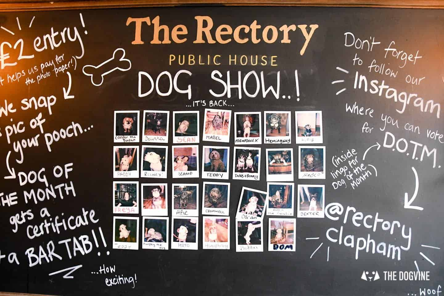 My Dog-friendly London Clapham & Battersea By Hemingway The Pug The Rectory 6