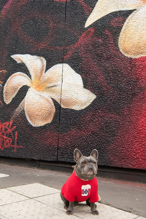 The Dogvine Guide To A Shoreditch Street Art Dog Walk 12