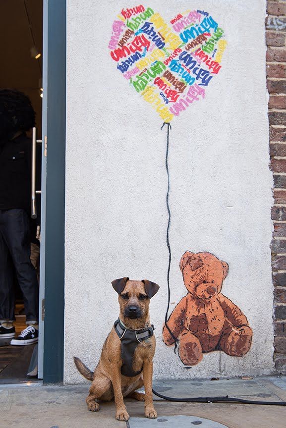 The Dogvine Guide To A Shoreditch Street Art Dog Walk 7