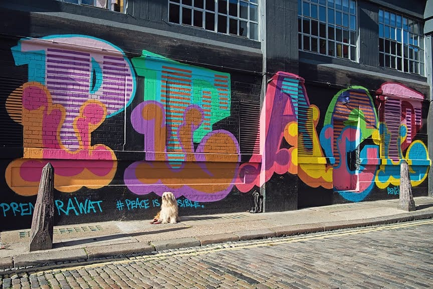 The Dogvine Guide To A Shoreditch Street Art Dog Walk 8