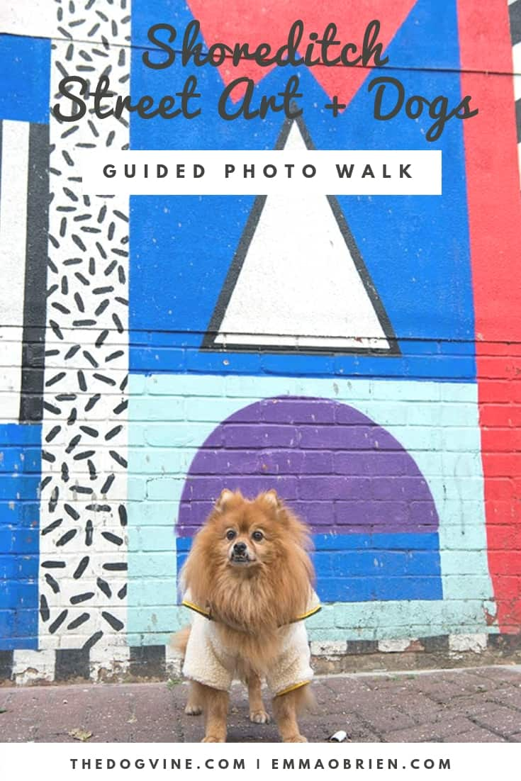 The Dogvine Guide To A Shoreditch Street Art Dog Walk - Oscar