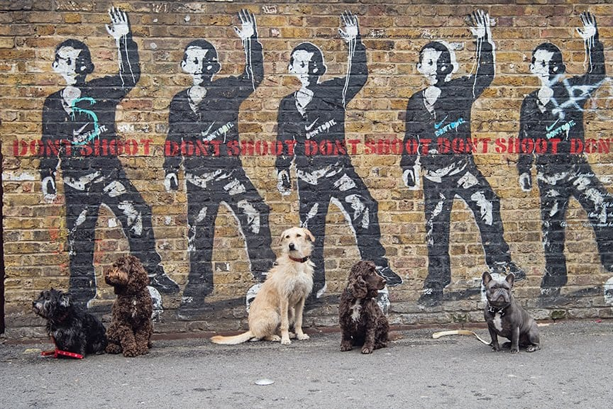 The Dogvine Guide To A Shoreditch Street Art Dog Walk - Rivington Street