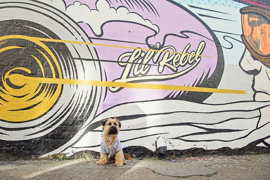 The Dogvine Guide To A Shoreditch Street Art Dog Walk - Sclater Street - Lil Rebel