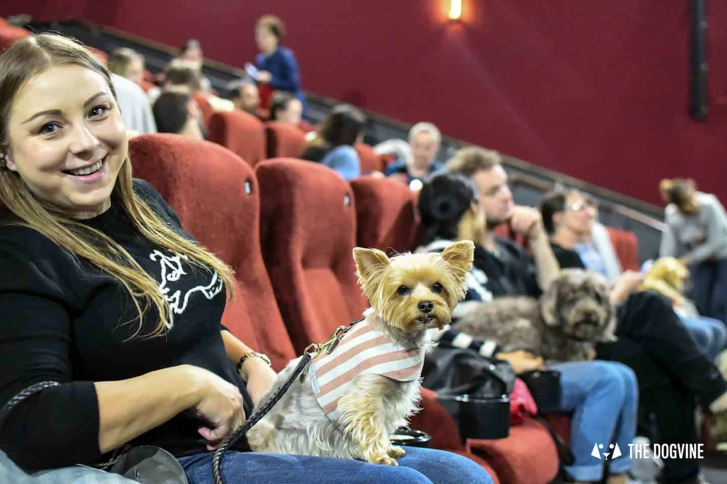Dog-friendly Cinema At Picturehouse Central January 2019