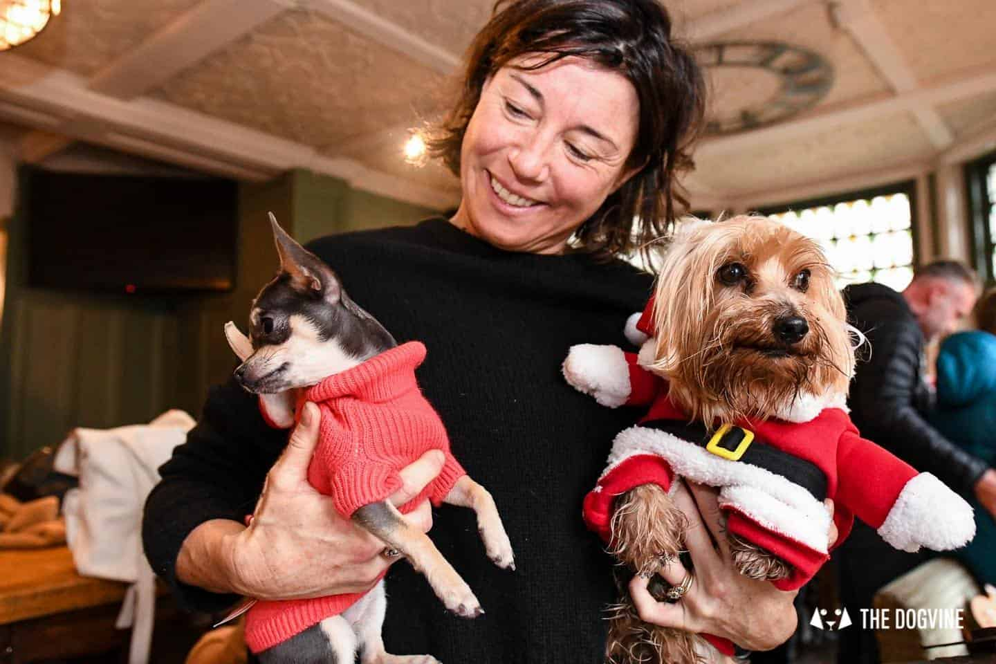 Dogs of the Windmill Clapham Dog Christmas Jumper Competition 15