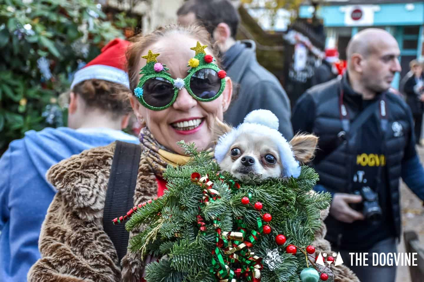 London Dog Events On This Week 06-09 December - All Dogs Matter Santa Paws
