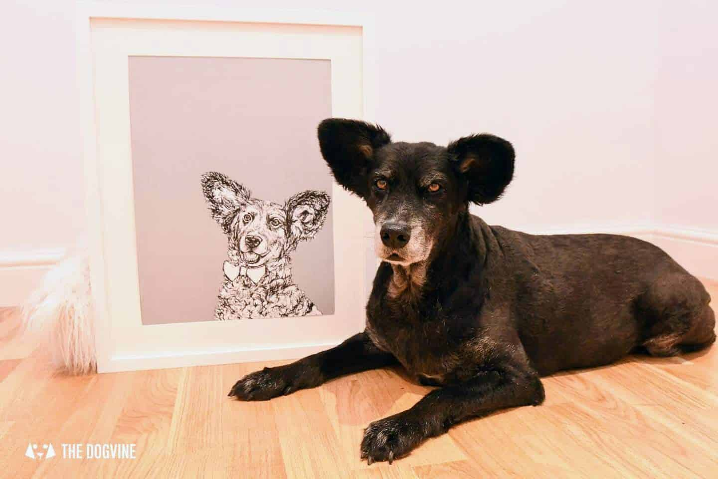London Dog Portraits To Make You Smile - Rebecca Harrison Designs - Belinha next to her portrait