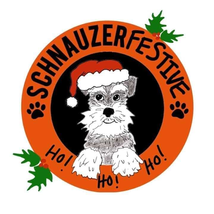 Schnauzer Christmas Jumper Walk in aid of Schnauzerfest