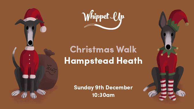 Whippet Up Christmas Walk