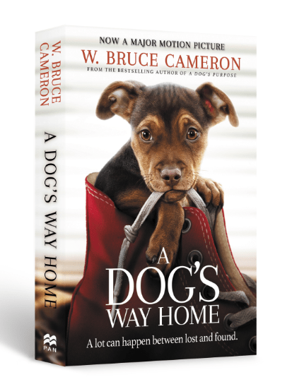 A Dog's Way Home Book - The Dogvine Giveaway