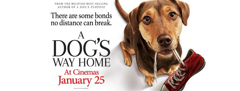 A Dog's Way Home Film Banner