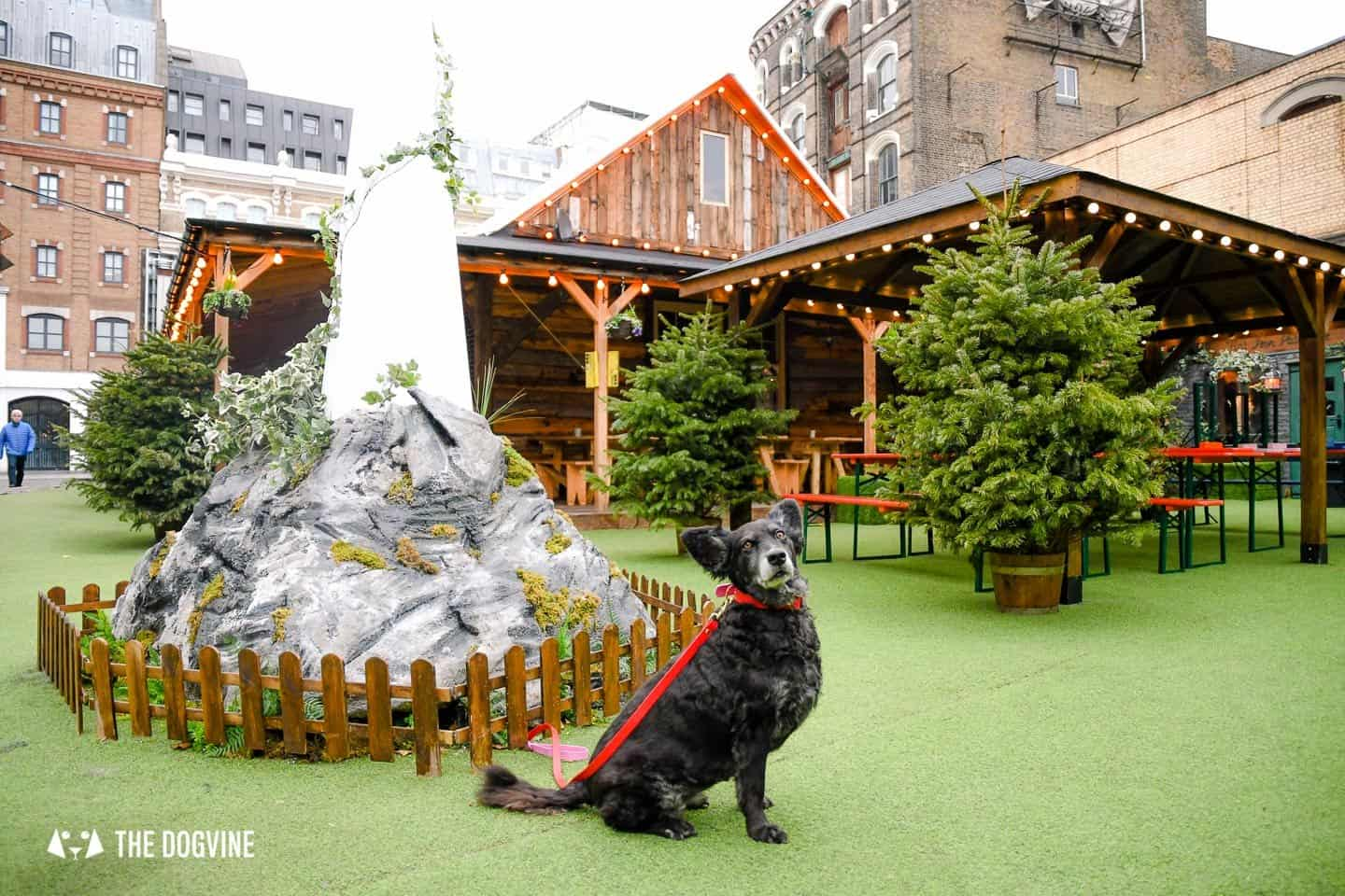 Best Dog-friendly Street Food Markets and Halls in London 9