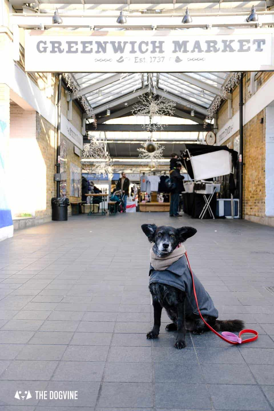 Best Dog-friendly Street Food Markets and Halls in London - Greenwich Market