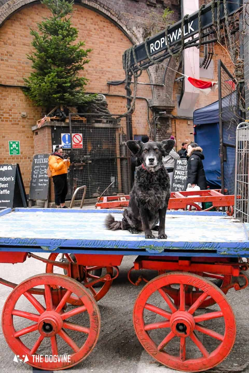 Best Dog-friendly Street Food Markets and Halls in London - Maltby Street Market Ropewalk