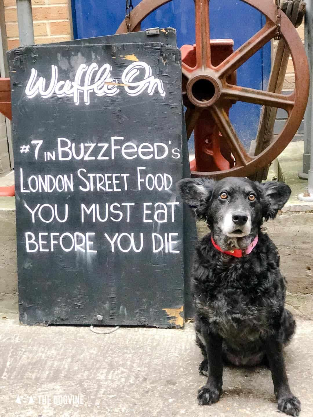 Best Dog-friendly Street Food Markets and Halls in London - Maltby Street Market Waffles