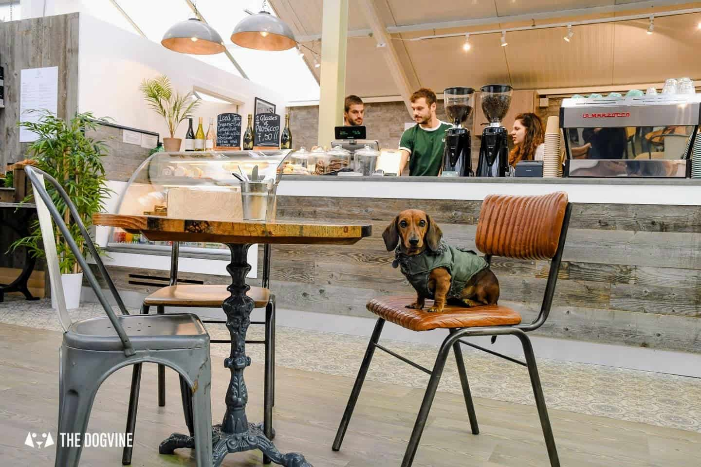 Dog-friendly Fulham - My Dog-friendly London - The Palace Gardener 4