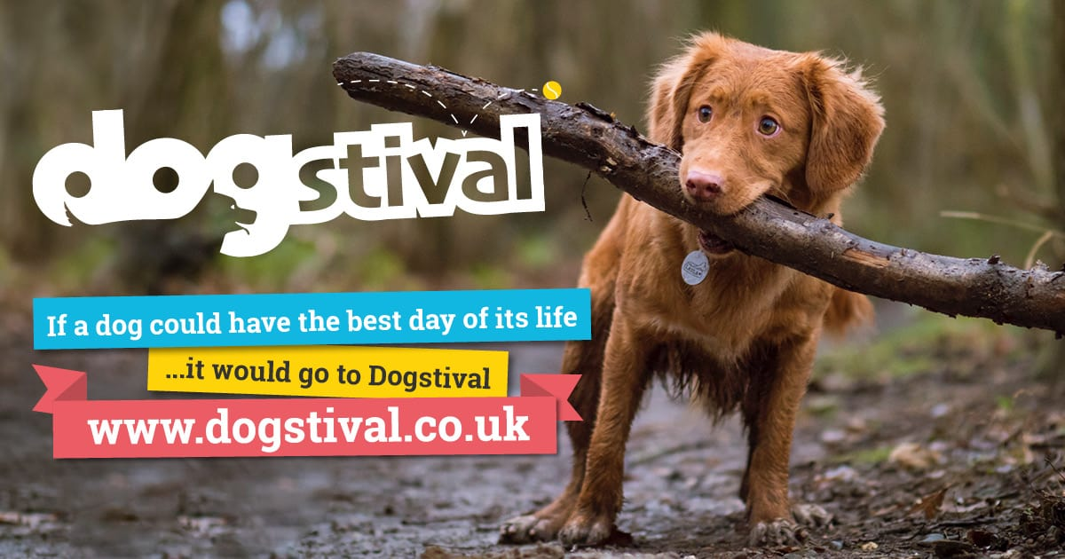 Dogstival Festival for Dogs