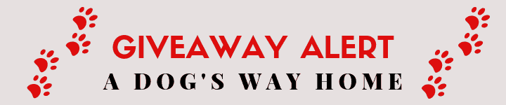 Giveaway - A Dog's Way Home Takeover on The Dogvine