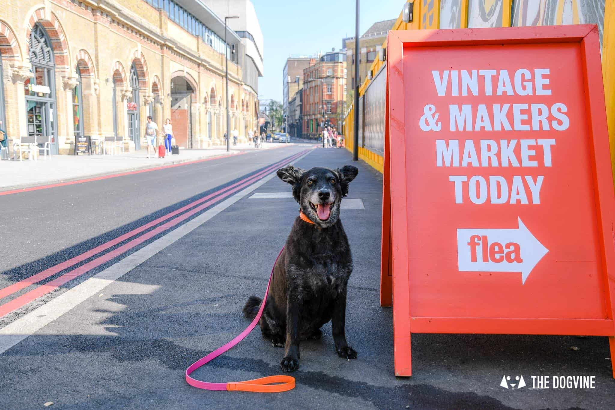 Guide To The Best Dog-friendly Street Food Markets and Halls in London - Vinegar Yard 3