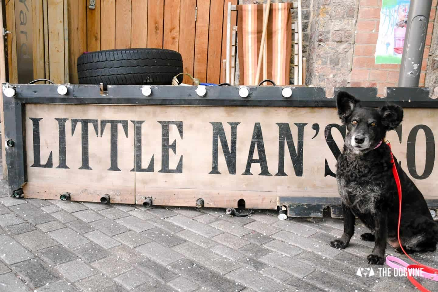 Living it Up Down Dog-friendly Little Nan's Deptford Market Yard 8