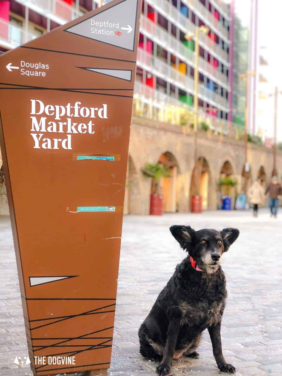 Living it Up Down Dog-friendly Little Nan's Deptford Market Yard 9