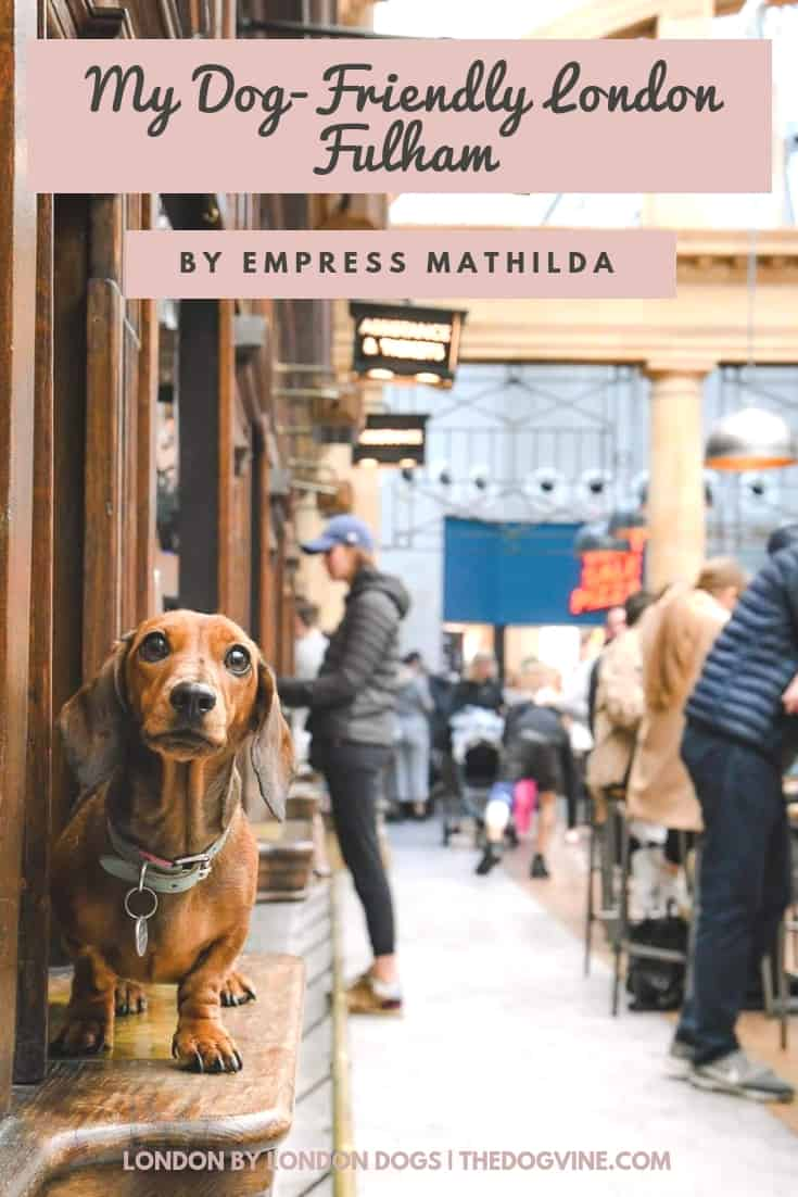 My Dog-friendly Fulham _ Guide By Empress Mathilda Sausage