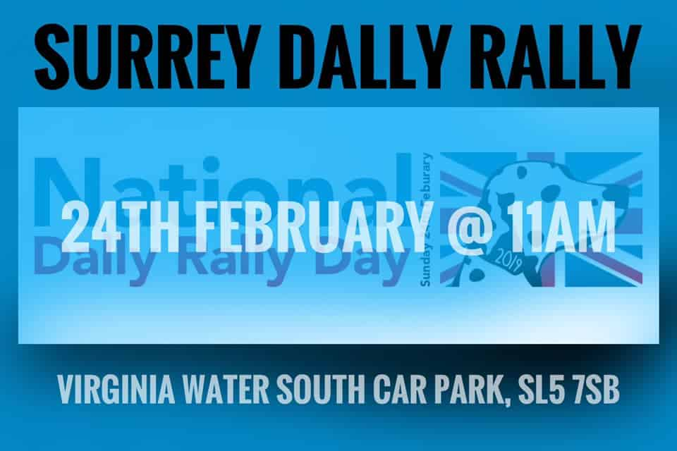 National Dally Rally Surrey