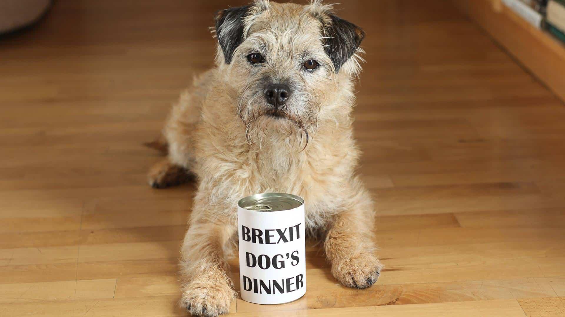 Brexit Dog's Dinner