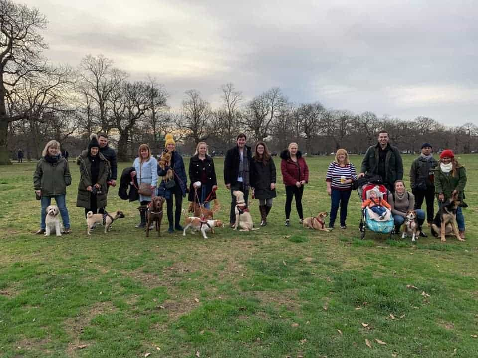 Doggie Walk to Greenwich - Isle of Dogs Meetup Group